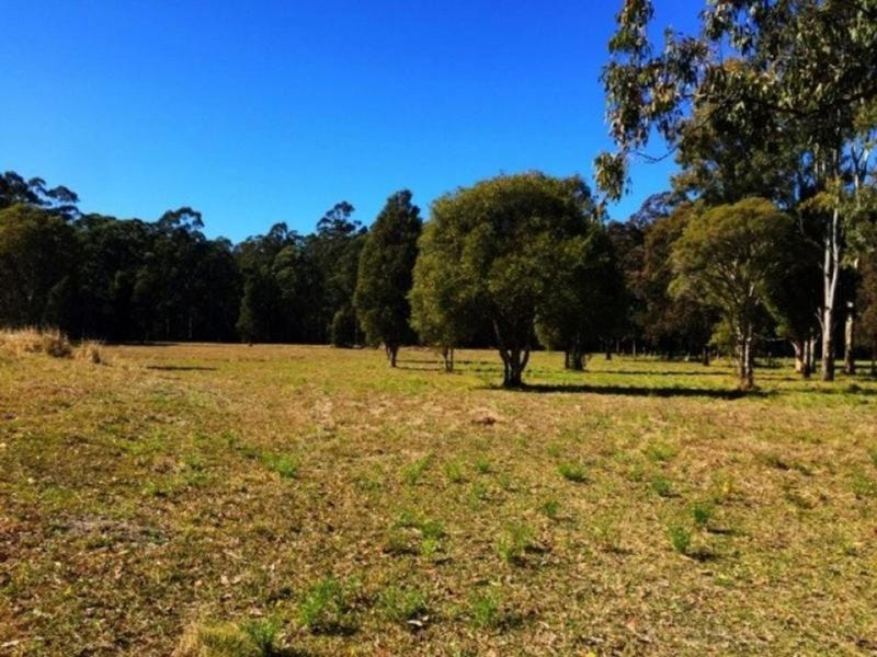 647 Markwell Back Road, Markwell, NSW 2423