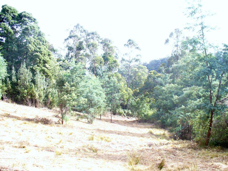 Foleys Road, Claude Road, Tas 7306