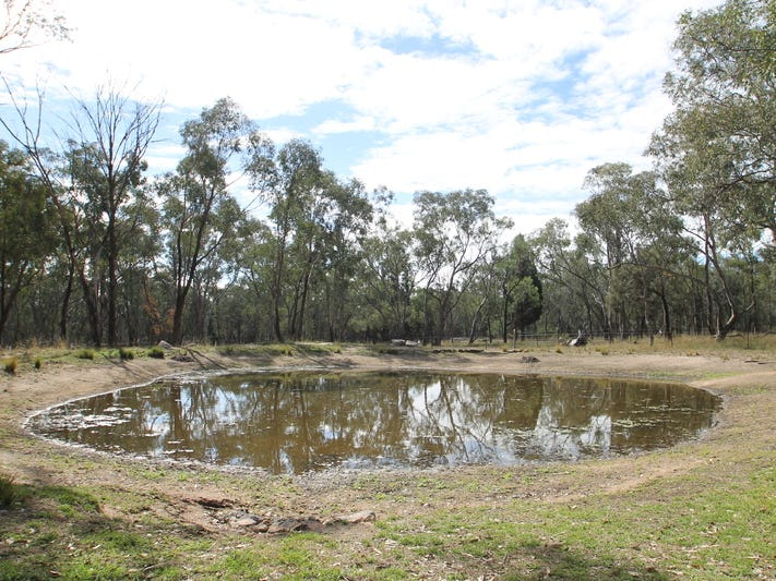 198 Cypress Drive, Mudgee, NSW 2850