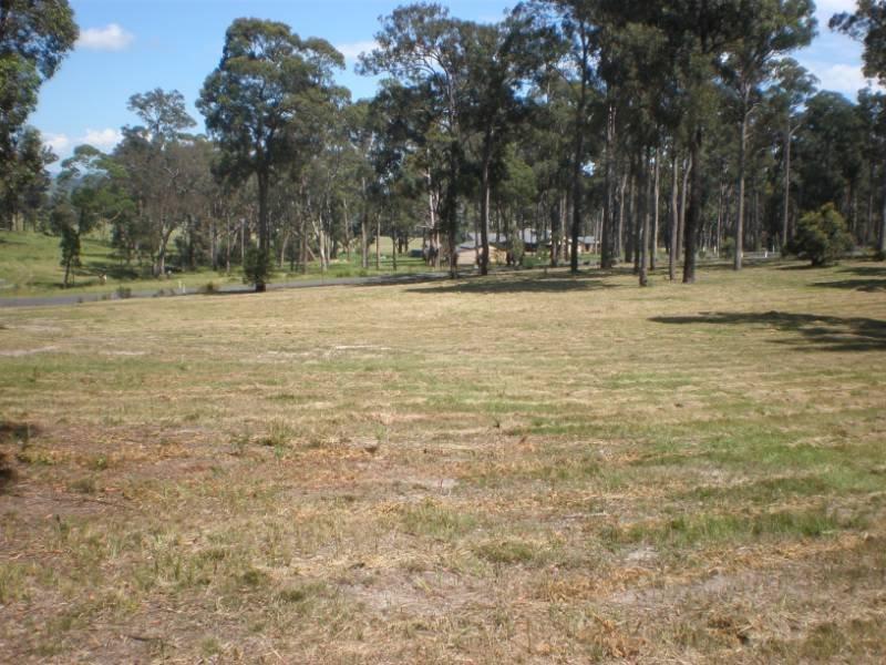 Lot 40 Charms Place, Bergalia, NSW 2537