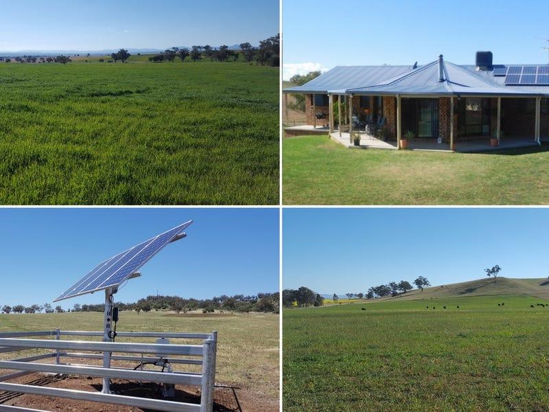 Loreena West, 772 Babbinboon Road, Somerton, Tamworth, NSW 2340