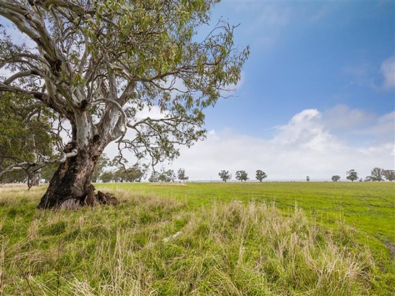 2376 Kyneton-Redesdale Road, Redesdale, Vic 3444