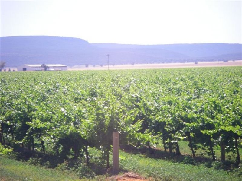 Farm 1628 Black Gate Road, Myall Park, NSW 2681