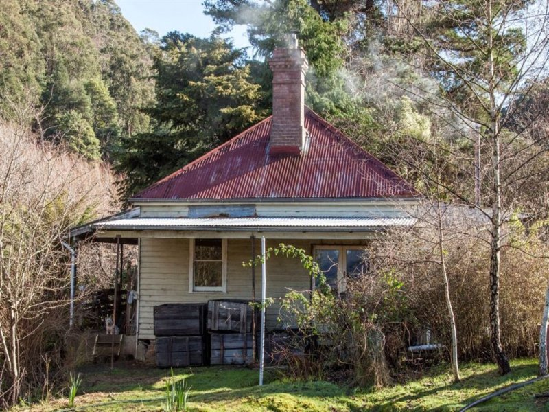 202 Castle Forbes Road, Castle Forbes Bay, Tas 7116