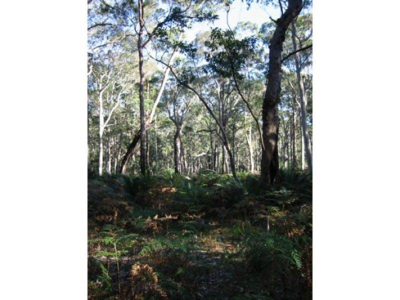 Lot 4 Fern Drive, South Durras, NSW 2536