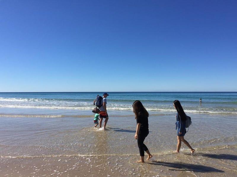 18 HANLAN STREET, Surfers Paradise, Qld 4217