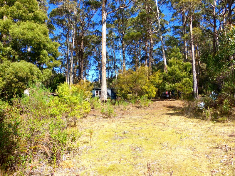 Address available on request, St Marys, Tas 7215
