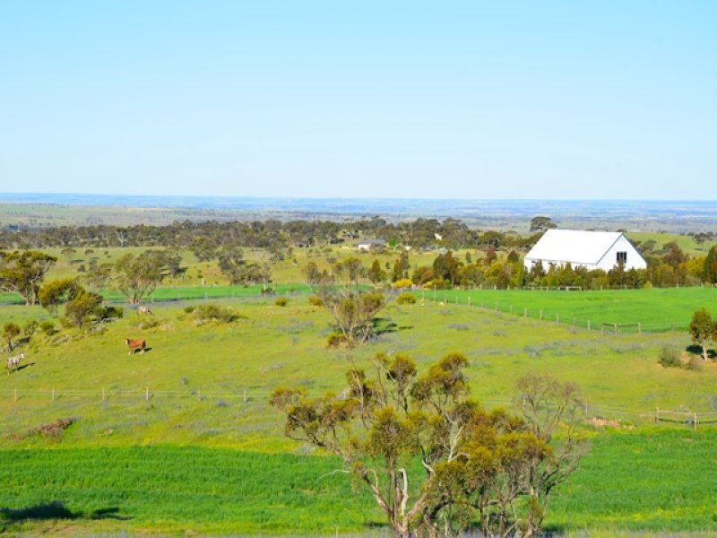 169 Bondleigh Road, Rockleigh