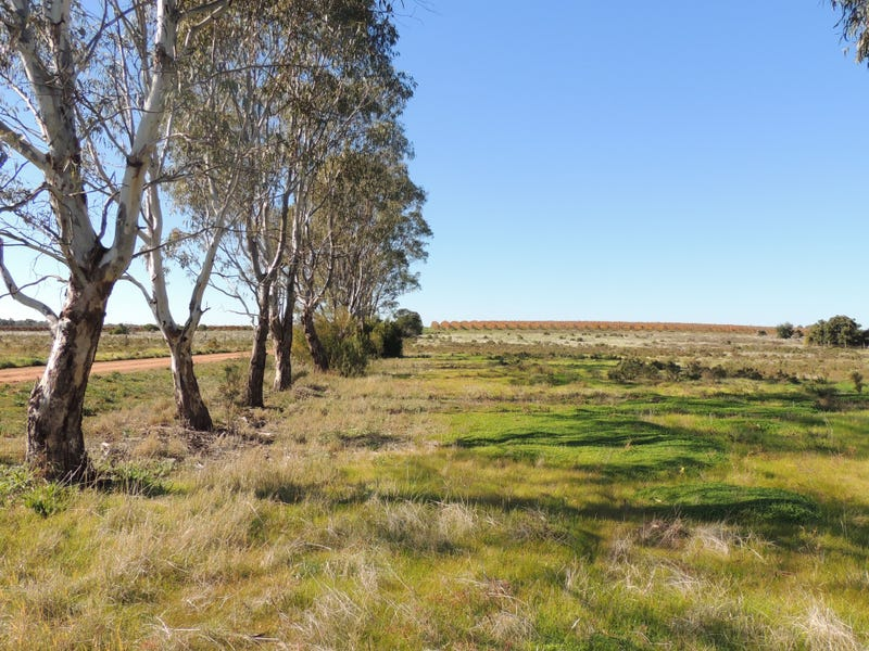 Lot 6 & 7 Koraleigh Road, Tooleybuc, NSW 2736