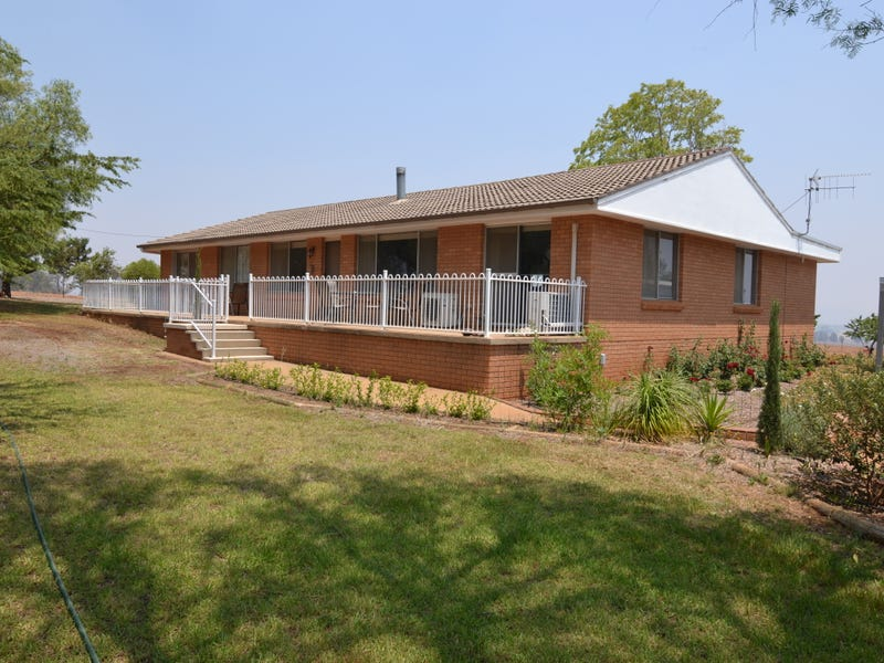 2391 Castlereagh Highway, Gulgong, NSW 2852