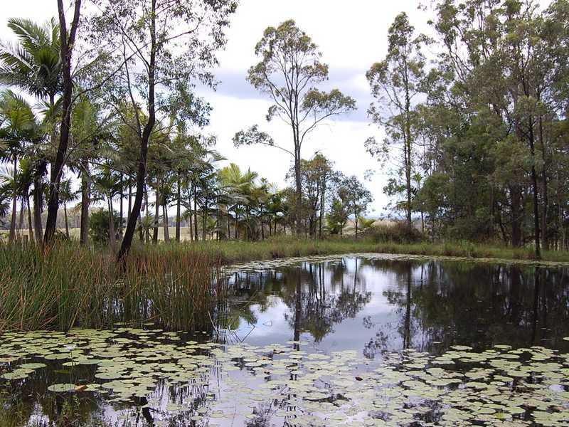 1205 Coraki Ellangowan Road, Coraki, NSW 2471