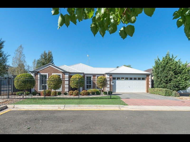 189 Folland Avenue, Lightsview, SA 5085