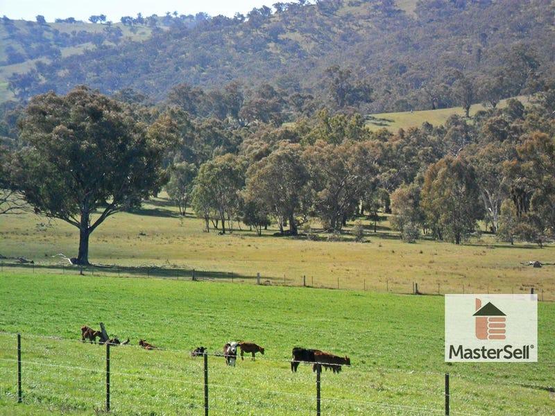 45 Rays Road, Nangus, NSW 2722
