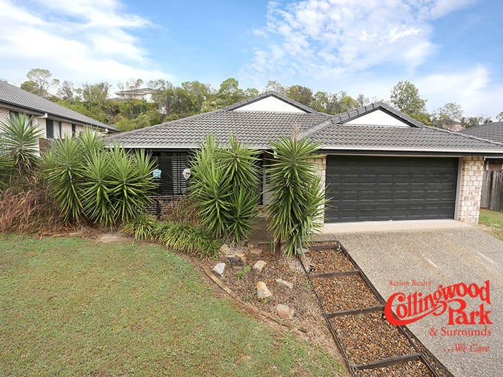 234 Eagle Street, Collingwood Park, Qld 4301