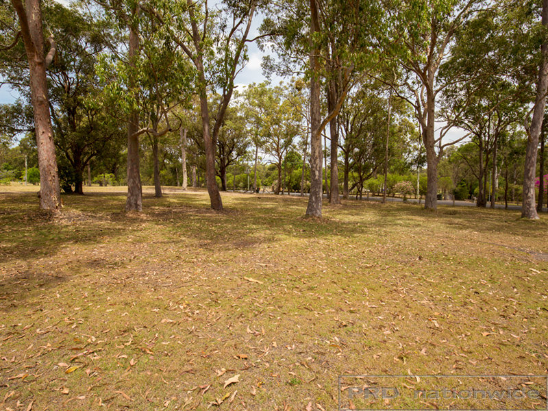 Lot 12/469 Louth Park Road, Louth Park, NSW 2320