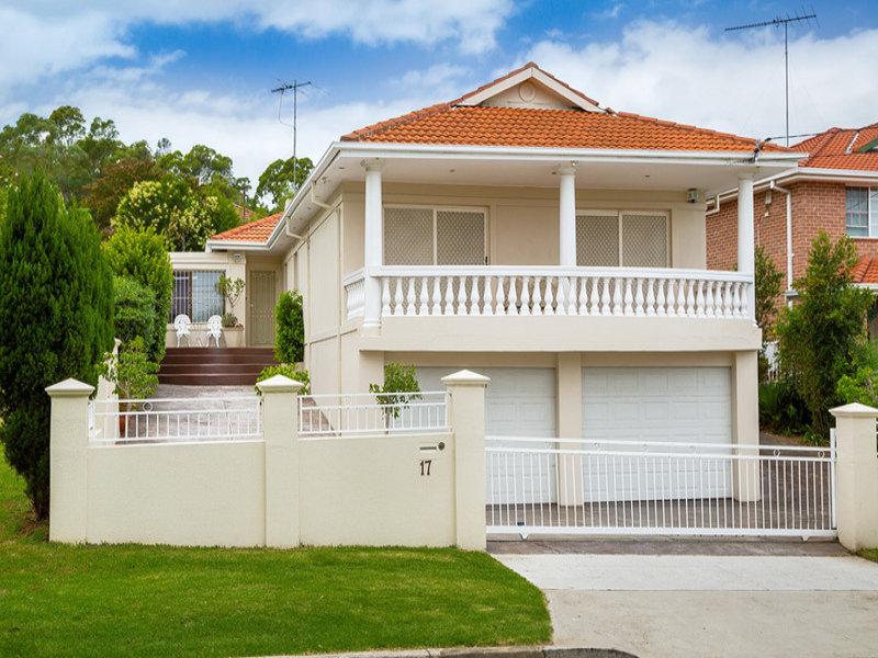 17 Frank Street, Mount Lewis, NSW 2190