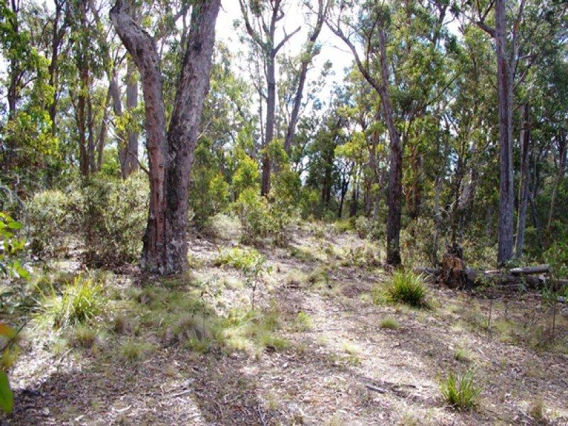 500 Bloomfield Road, Yarrowitch, Walcha, NSW 2354