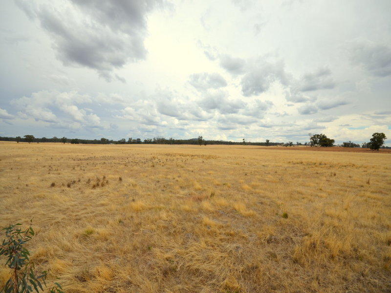 CA 3B Bealiba - Wehla Road, Cochranes Creek, Vic 3475