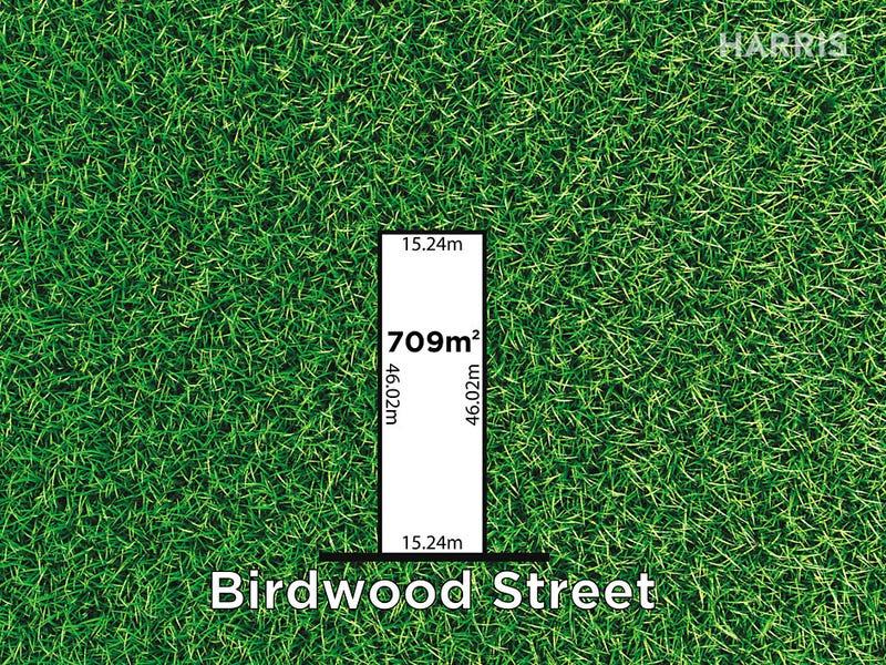29 Birdwood Street, Netherby, SA 5062
