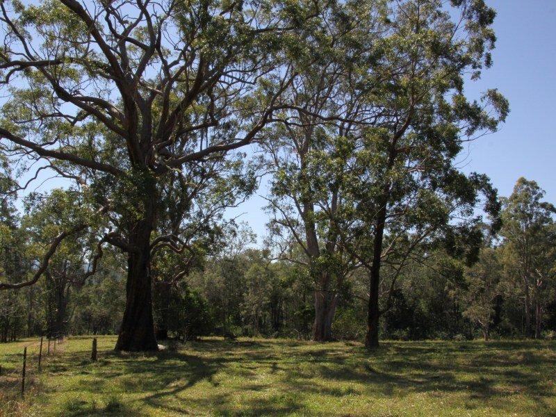 5 Williams Road, Cawongla, NSW 2474
