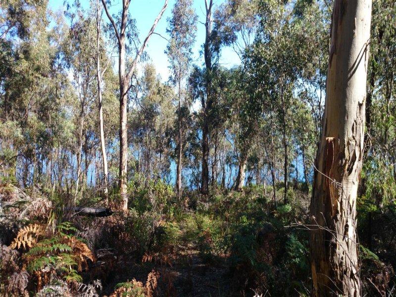 27 Grundys Road, Lunawanna, Tas 7150