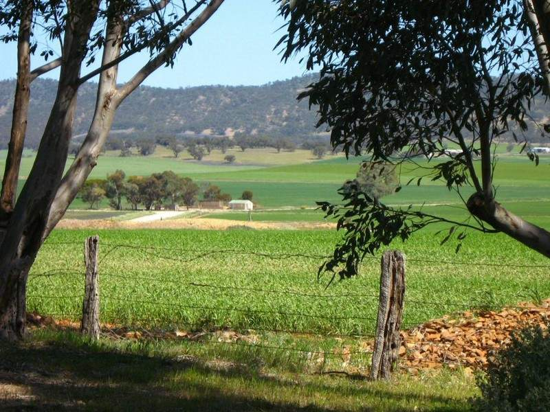 Section 418C Black Springs Road, Emu Downs, SA 5381