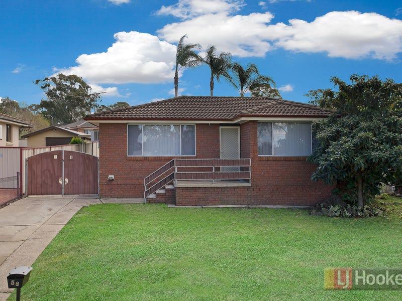 58 Hoyle Drive, Dean Park, NSW 2761