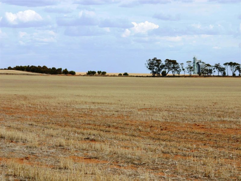 Farm Lot 1 Calder Highway, Sea Lake North, Sea Lake, Vic 3533
