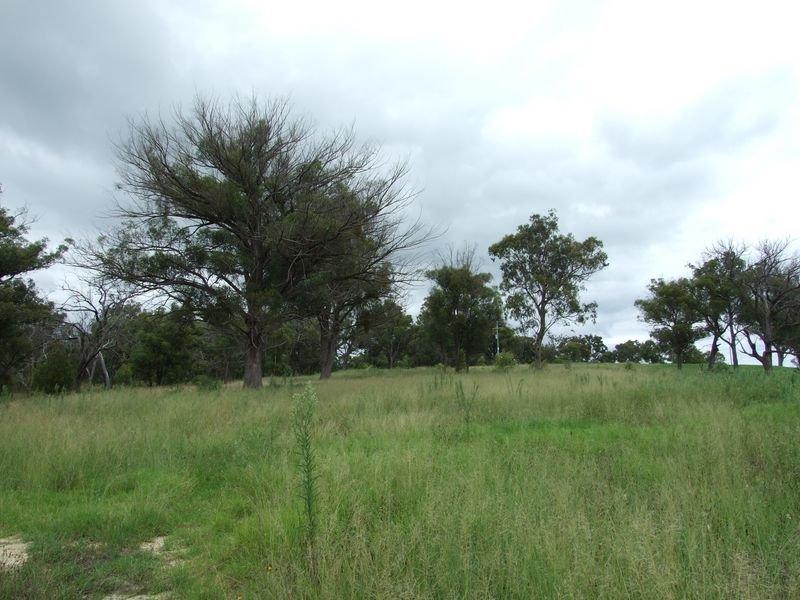 Lot 1 Rosedale Lane, Kanoona, NSW 2550