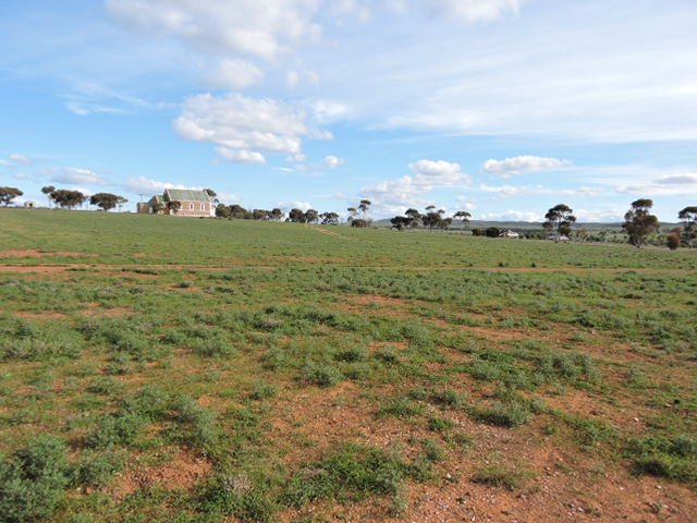 Lot 81, 7 EAST TERRACE, Carrieton, SA 5432