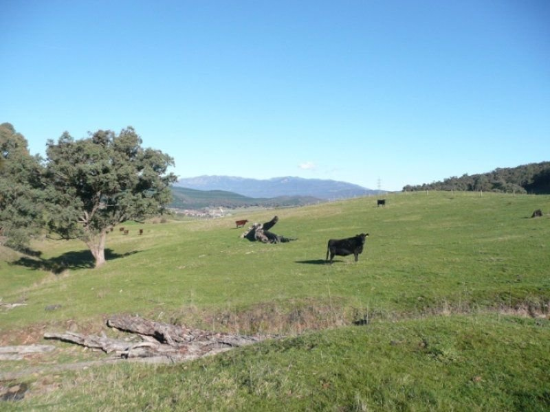Lot 19 Briggs Lane, Myrtleford, Vic 3737