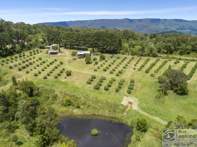 446 Gwynne Road, Georgica, NSW 2480