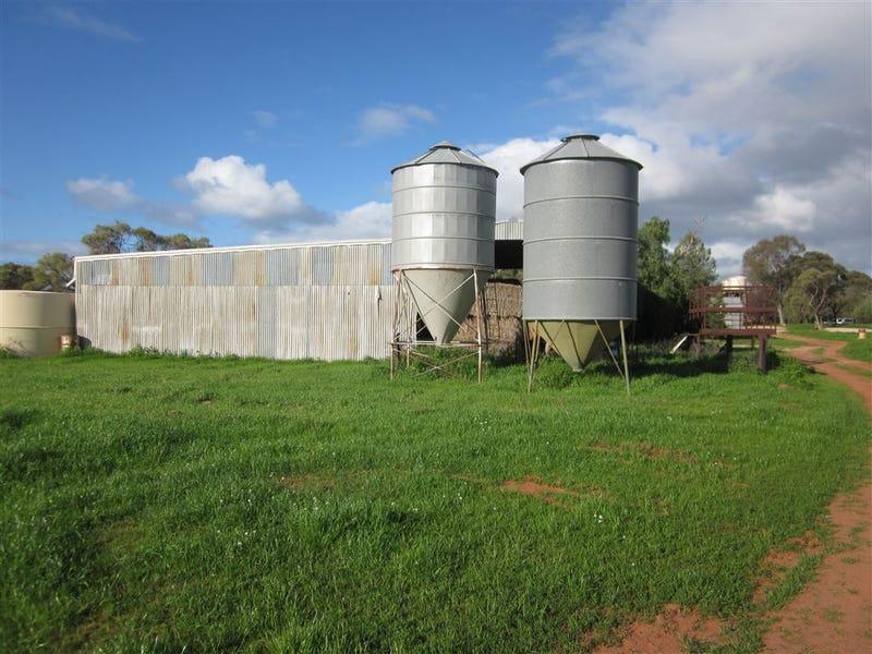 . Coolaminyah, Ivanhoe, NSW 2878