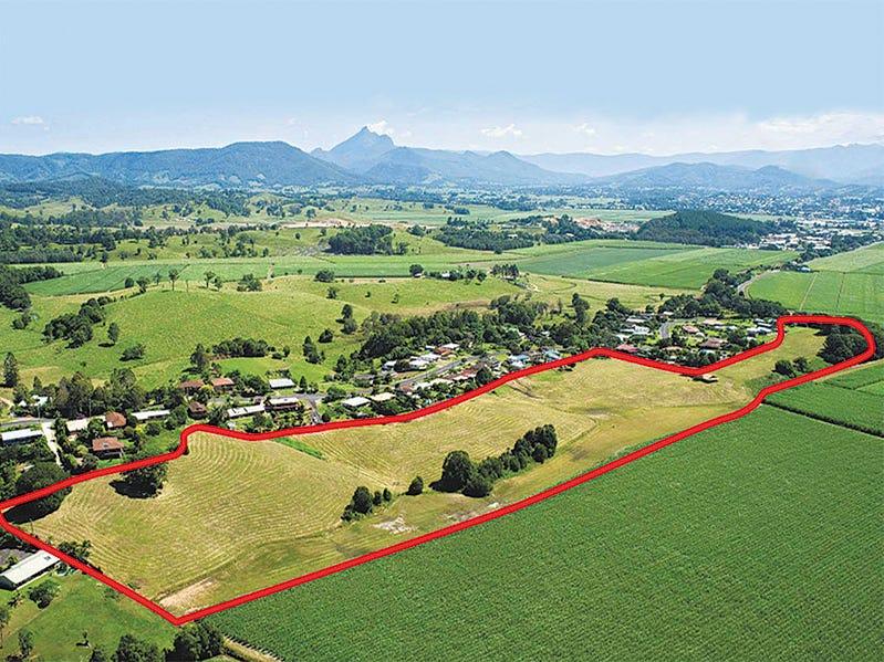 59 Reserve Creek Road, Murwillumbah, NSW 2484