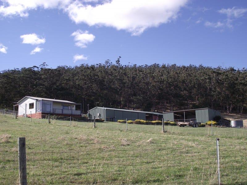 253 Greens Road, Orielton, Tas 7172