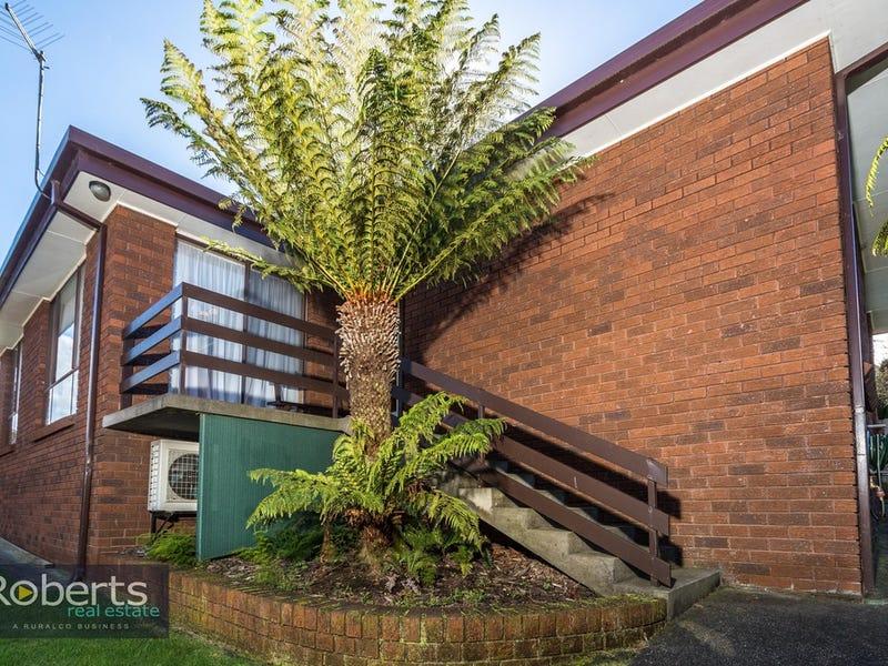 116 Viewbank Road, Newnham, Tas 7248