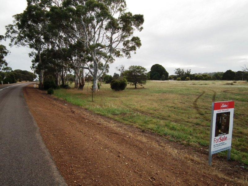 Lots 49, 50 and 62 Sabine Street, Coulta, SA 5607
