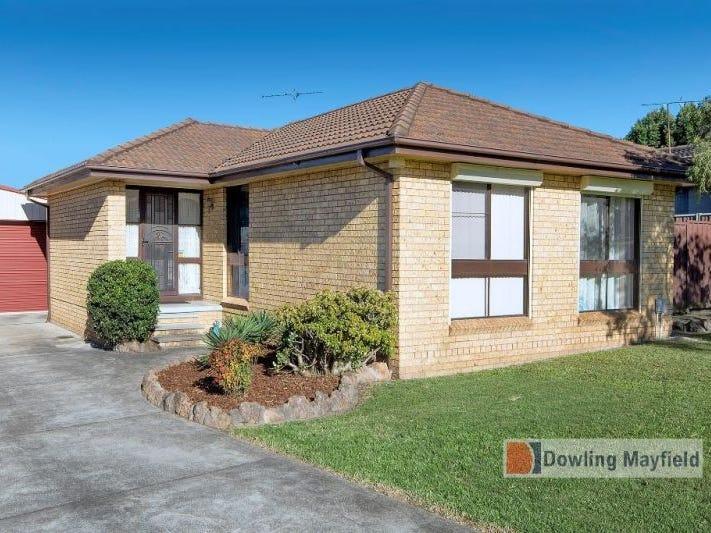 48 Casuarina Circuit, Warabrook, NSW 2304