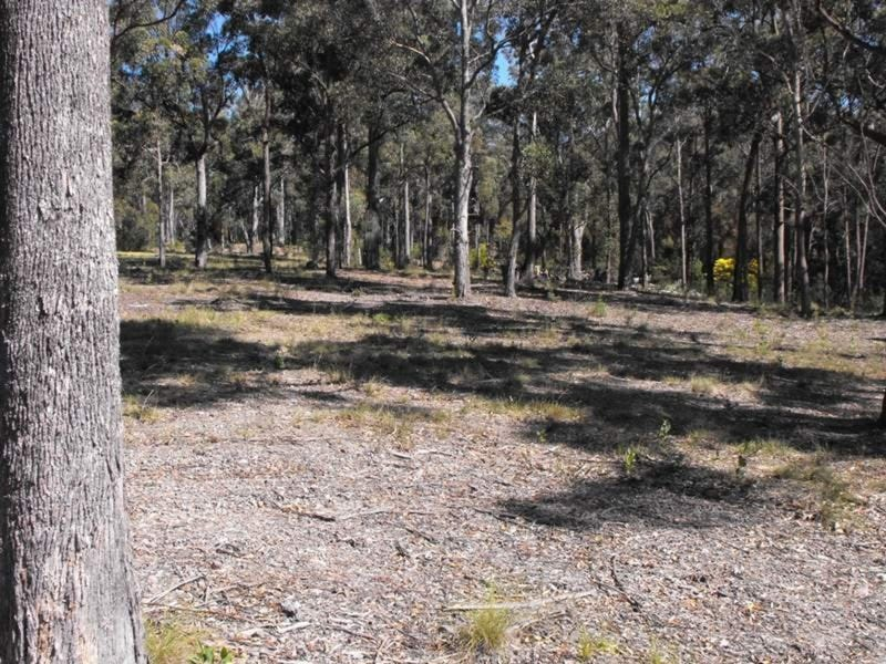 Lot 33 Ochre Lane, Millingandi, NSW 2549