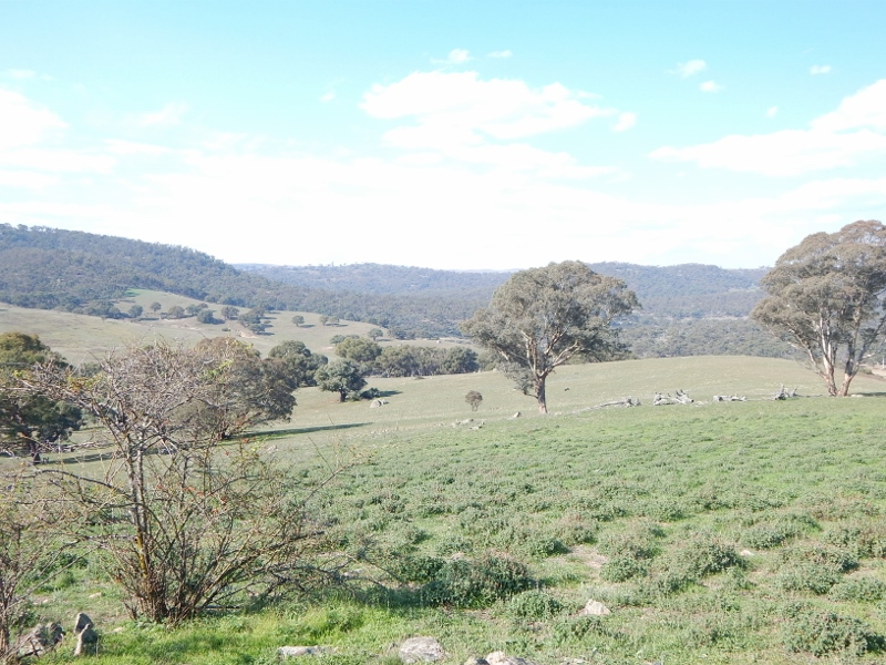 Tolbar Ironmungie Road, Dalgety, NSW 2628