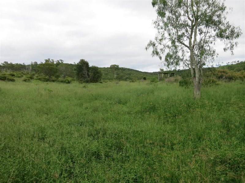 165 Spanns Road, Mount Larcom, Qld 4695