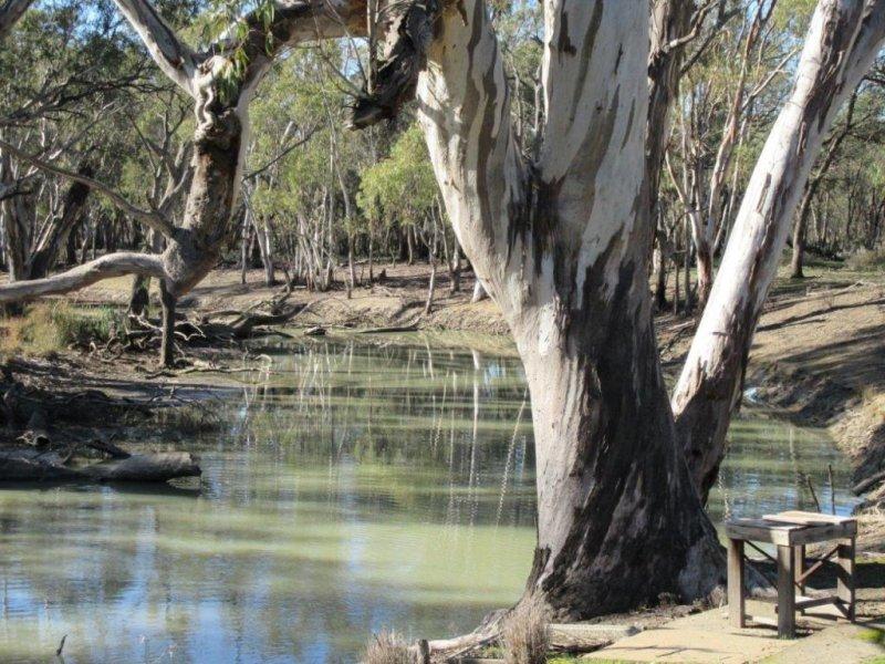 1031 GREENHILLS LANE, Barham, NSW 2732