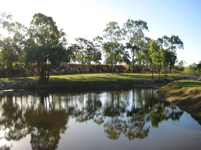 41 Old Rocky Waterholes Road, Pleystowe, Qld 4741