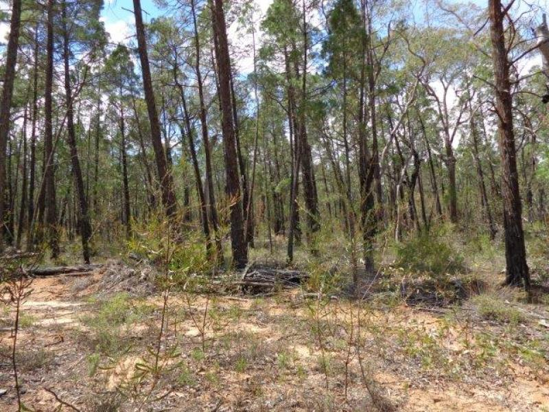 Lot 4  Premer Road, Premer, NSW 2381