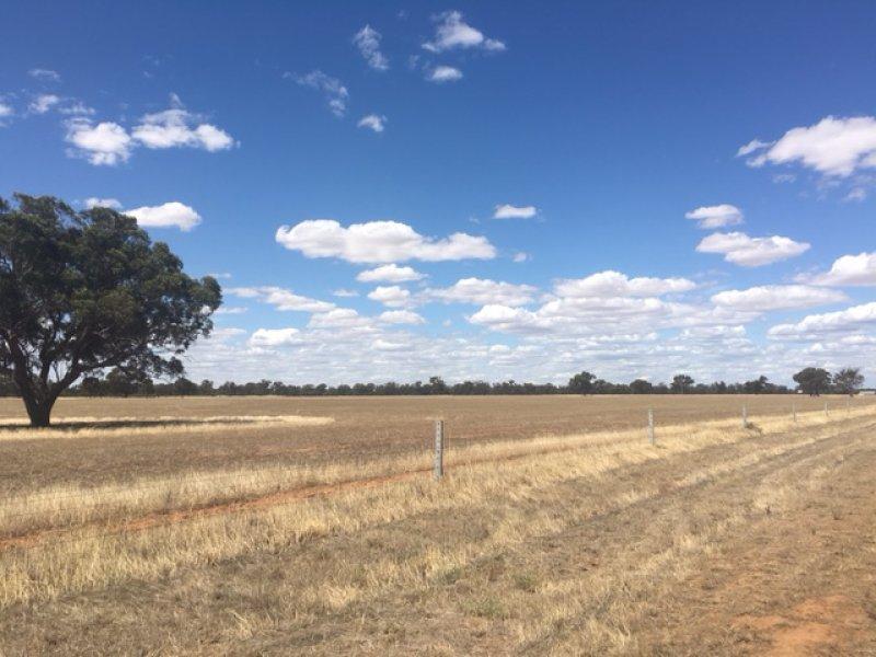 2365 Grifiths Road, Womboota, NSW 2731