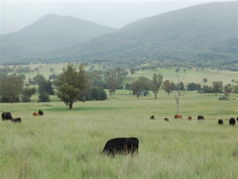'Ulumbarella' Horton Valley, Barraba, NSW 2347