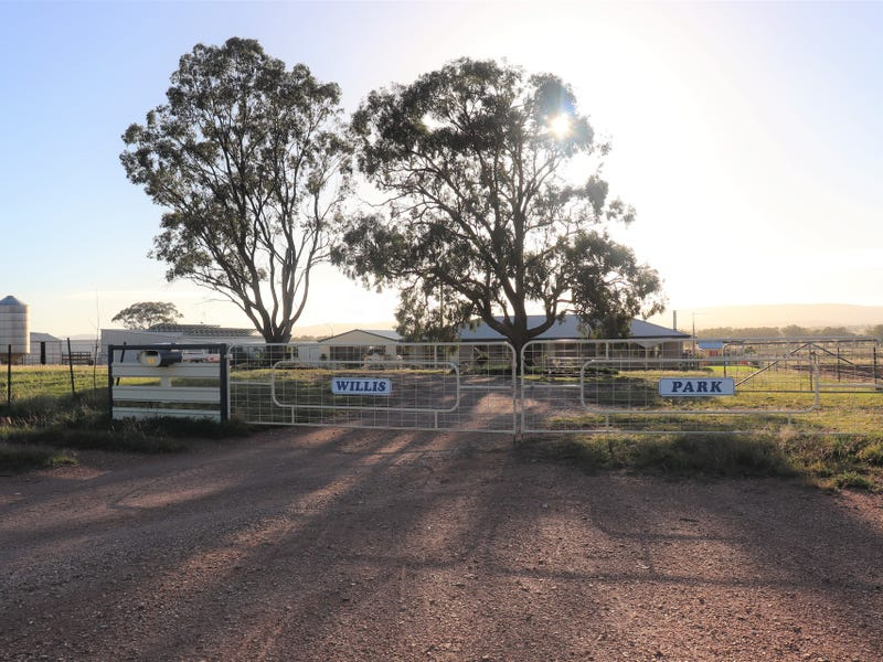 85 Rosser Road, Peak Hill, NSW 2869
