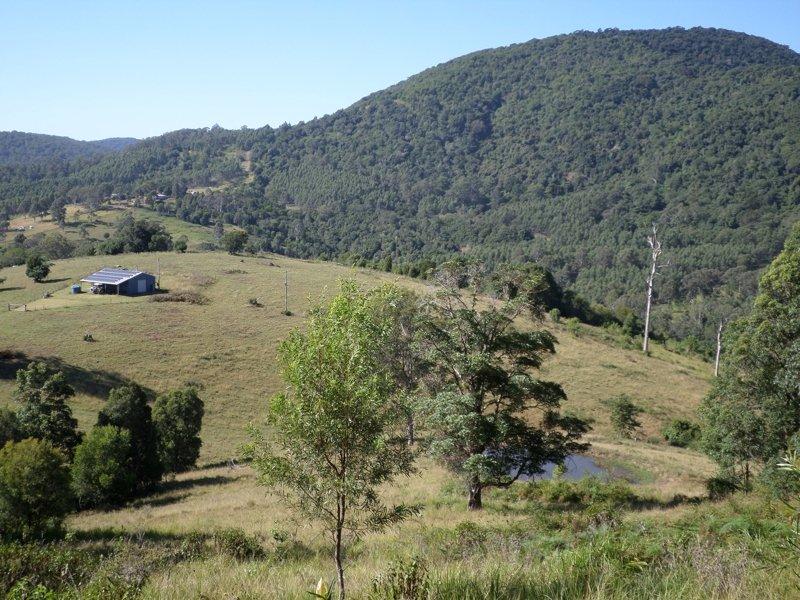 353B Wallis Road, Ellenborough, NSW 2446