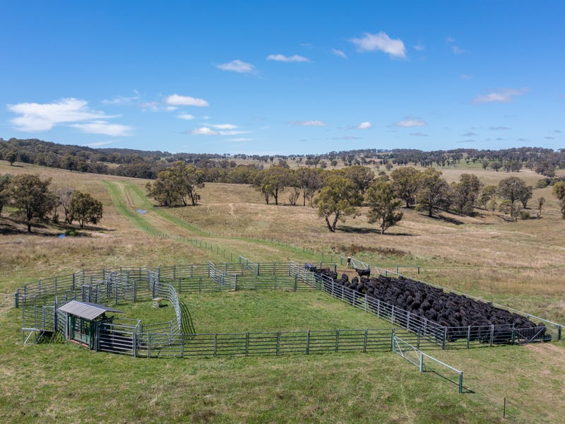 479 Whans Road, Llangothlin, NSW 2365