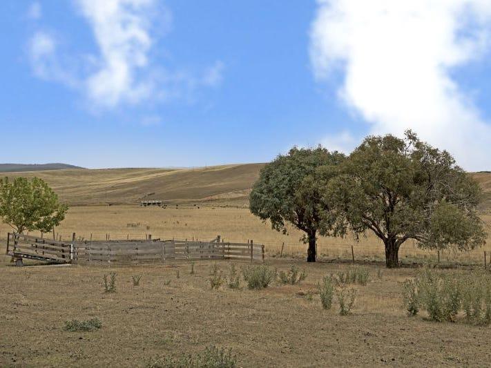 276 Scenic Drive, Adaminaby, NSW 2629